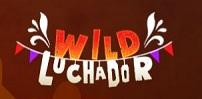 Cover art for Wild Luchador slot