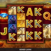 rumble rhino megaways slot game