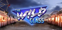Cover art for The Wild Class slot