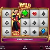 wild harlequin slot game